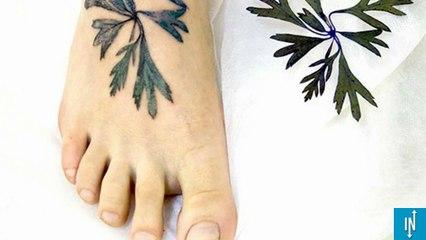 Que Signifie La Plume En Tatouage Un Des Symboles Les Plus Populaires