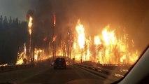 Une voiture traverse une forêt en flammes pendant l'incendie de Alberta au Canada