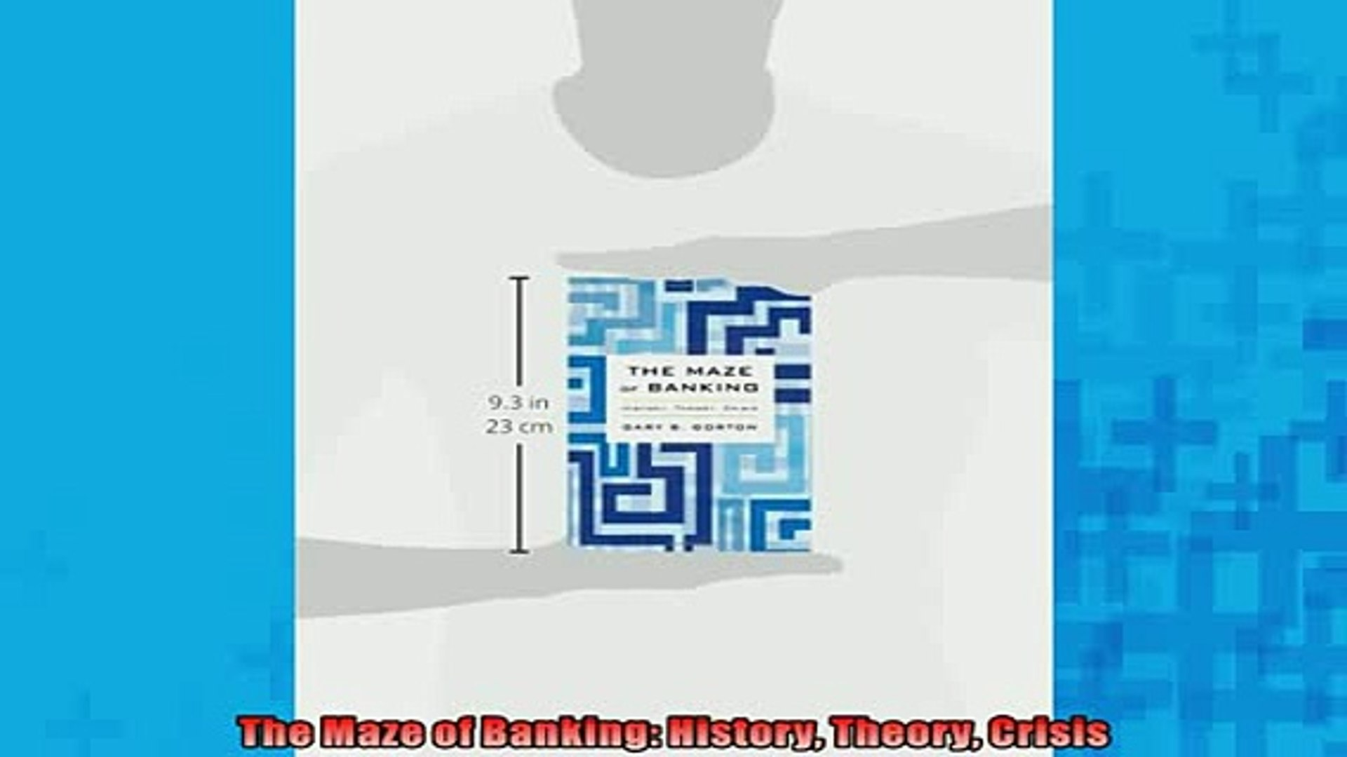 READ book  The Maze of Banking History Theory Crisis  FREE BOOOK ONLINE
