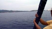 Sailvibes 15 juni 2011 Dolfijnen golf van Hydra