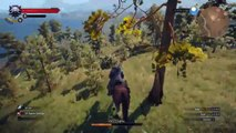 The Witcher 3 Monty Python & The Holy Grail Easter Egg ( Monty Python y el Santo Grial)