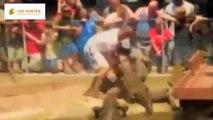 Biggest wild animal fights : Most Amazing Wild Animal Attacks  : Most Wild Deadly Animal Attacks 16