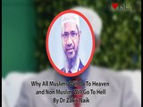 Why All Muslims Will Go To Heaven And Non Muslim Will Go To Hell By Dr Zakir Naik