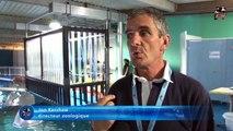 Marineland TV Reportage N°51 En exclusivité : Plongez dans la cage aux requins
