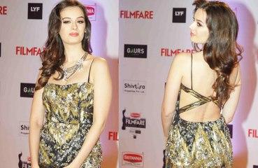 Evelyn sharma Hot Back Exposing | Bollywood Hot Actress at Red Carpet