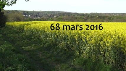 "VIDEO-POEME ""66 MARS 2016"""
