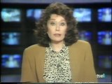 Caso Alcasser (TVE, Antena 3, 1993)  Sin Vergüenza (TVE, 1993)