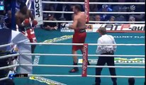 Dereck Chisora vs Kubrat Pulev Full Fight HD 2016-05-07