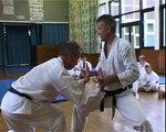 Tom Hills Karate Dojo; Goju Kata Bunkai; Seiyunchin; wrestling defense