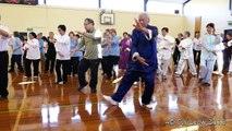 2016 WORLD TAI CHI AND QIGONG DAY, Wellington, NZ-TAI CHI 24 FORM YANG STYLE