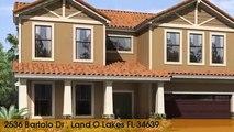 Home For Sale - 2536 Bartolo Dr Land O Lakes, Florida 34639