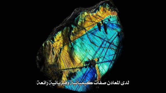 البداية الصخرية للحياة