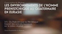 Du Paléolithique au Néolithique : impact des activités humaines sur le milieu végétal (Les environnements de l'Homme préhistorique au Quaternaire en Eurasie 3/3)