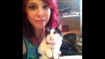Los Mejores Vines de Gatos del 2015! Recopilación Gatos Graciosos - Dailymotion