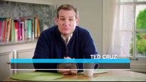 Cruz could restart presidential campaign if he wins Nebraska