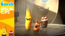 Funny worms 2016 - Fun Clips from Animation LARVA - [Official] Dance