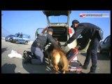 Tg Antenna Sud - Terrorismo, due fermi a Bari