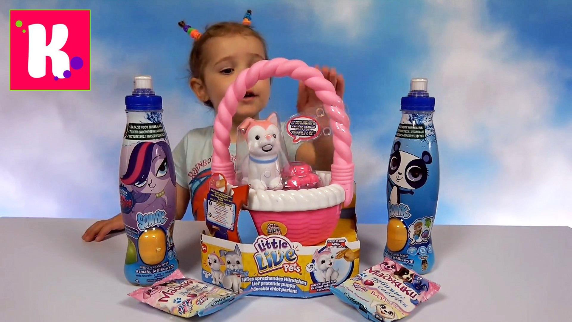 Собачки Live Pets Мэджики и Маленький зоомагазин ЛПС игрушки сюрпризы для Мисс Кати Puppy pets toys