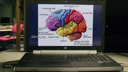 Les interfaces cerveau-machines