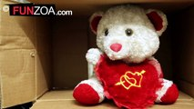 Im A Poor Teddy-Melodramatic Teddy Bear Begs For Subscriptions