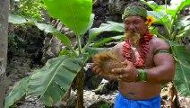 Cet autochtone a une technique bien à lui pour couper une noix de coco : Avec les dents !