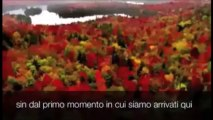3 Minuti Che Vi Cambieranno La Vita! Guardando Il Video, Ad Un Tratto Sono Scoppiato A Piangere!