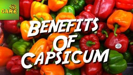 Health Benefits Of Capsicum | Care TV