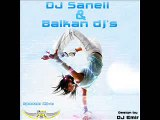 DJ SaNeLL & Balkan DJ's CD-Seka Aleksic - Soba 22 (Remix by z0x)