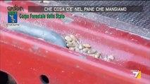 Cosa C'è Nel Pane Che Mangiamo? Reportage Shock! (VIDEO)