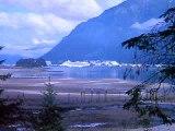 ALASKA FUN 19 MORE
