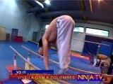 colombes gymnastique !!!