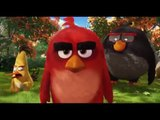 The Angry Birds Movie - Mightly Eagle Noises Clip - Incoming May 13