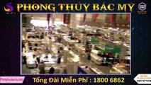 Phong thủy Bắc Mỹ tự hào là nhà nhập khẩu và phân phối số 1 tại Việt Nam
