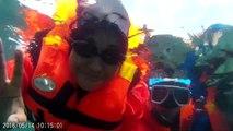 Under the sea at Pulau Mersing 14052016