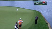 Adam Scott pops in his 20-foot chip for birdie at Wells Fargo