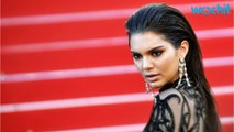 Kendall Jenner Parties In Style At Cannes