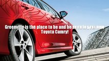 Paris Mountain State Park in Greenville, SC    TOYOTA Camry       GREENVILLE   South Carolina