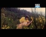 Dekha Hai Pehli Baar (Video Song) _ Saajan _ Madhuri Dixit _ Salman Khan