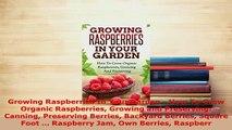 Download  Growing Raspberries In Your Garden  How To Grow Organic Raspberries Growing and PDF Online