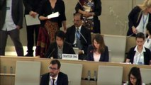 Freedom of expression and expression - HRC 29