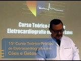 Apresentação - 15° Curso Teórico-Prático de Eletrocardiografia em Cães e Gatos