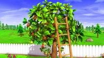 LittleBabyVEVO - I Had A Little Nut Tree | Nursery Rhymes | Original Song