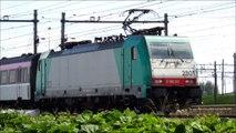 2801, NMBS SNCB HLE 28 met IC Brussel ri Rtd passeert rangeerterrein Kijfhoek, 14 juni 2012