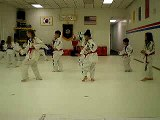 """Tae-Kwon-Do Red Belts: 10 """"Basic"""" Motions"""