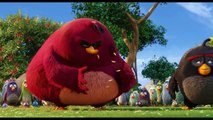 Angry Birds O Filme Bastidores da dublagem 12 de maio nos cinemas