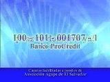 VII Radio Teleton AGAPE 2007 - 28 y 29 de Septiembre 2007