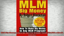 READ book  MLM Big Money Learn the Secrets Behind Those 10000 a Month Checks Online Free