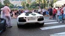 LOUD Lamborghini Aventador Roadster Start Up & REVS, Custom Exhausts