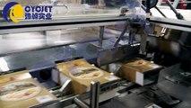 Biscuits Automatic Cartoning Machine/Automatic Cartoning Machine for Coffee Packaging/ Tea Box Packing Machine