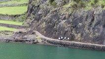 Surf - Adrénaline : Paul-César Distinguin en surf trip sauvage dans les Açores